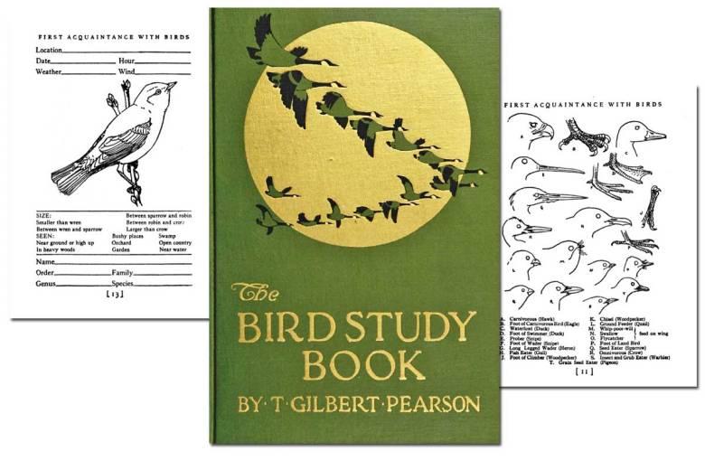 The Bird Study Book ~ Free eBook