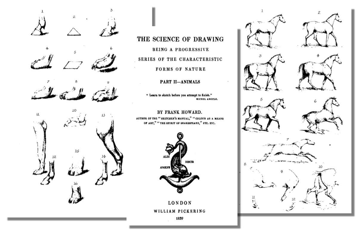 The Science of Drawing: Animals {Free eBook}