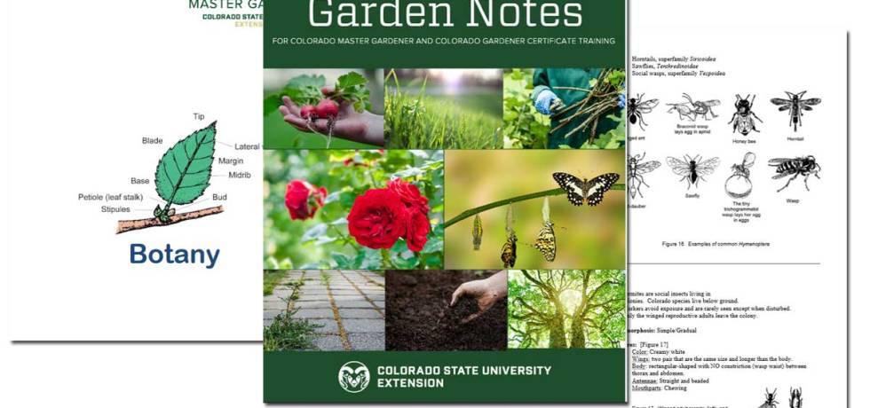 Garden Notes: Master Gardener Course ~ Free Download!