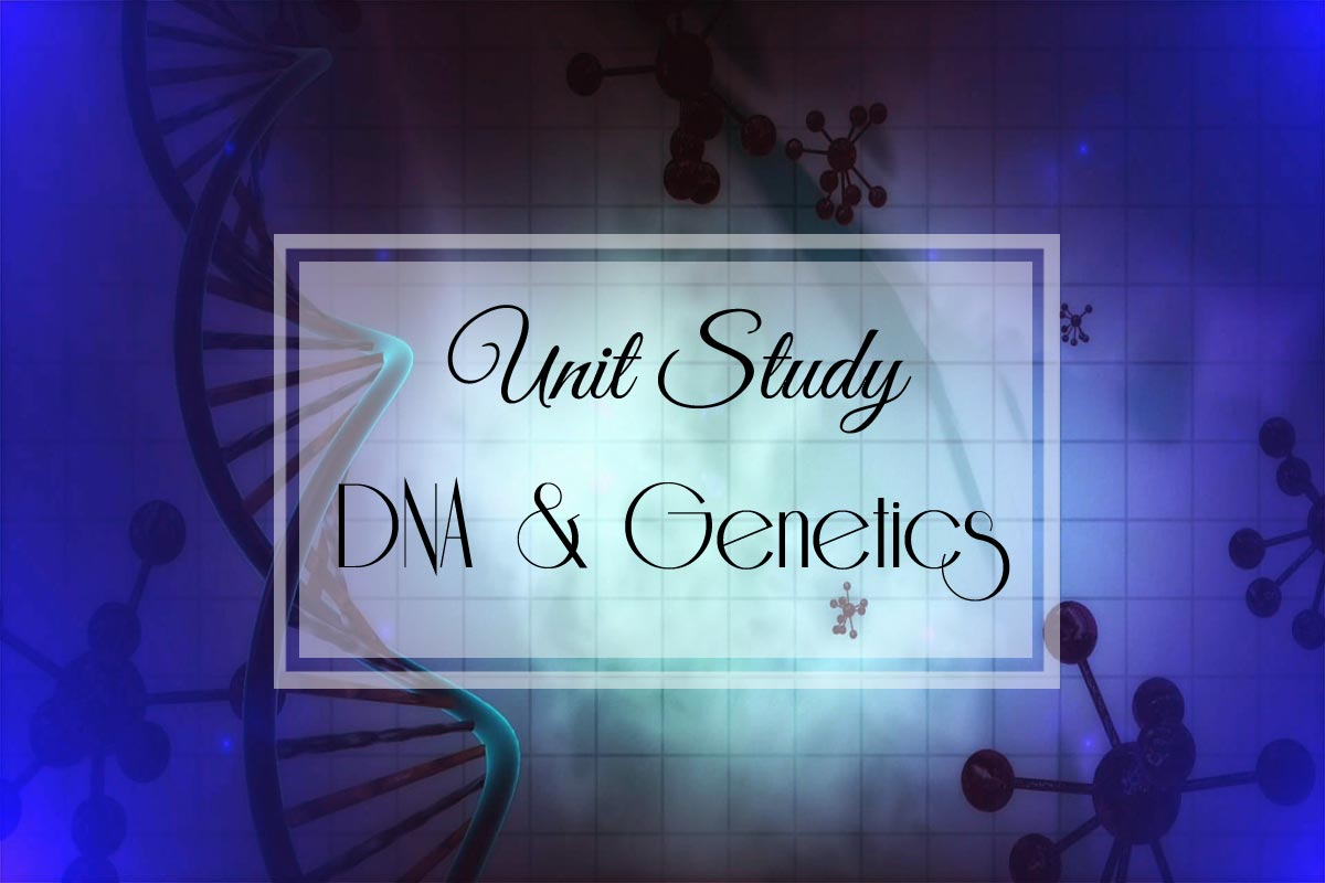 DNA & Genetics: A Unit Study