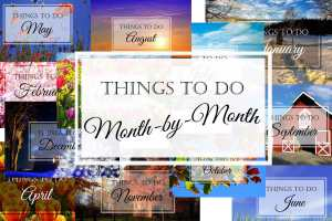 Things to Do: Learning Ideas for Each Month