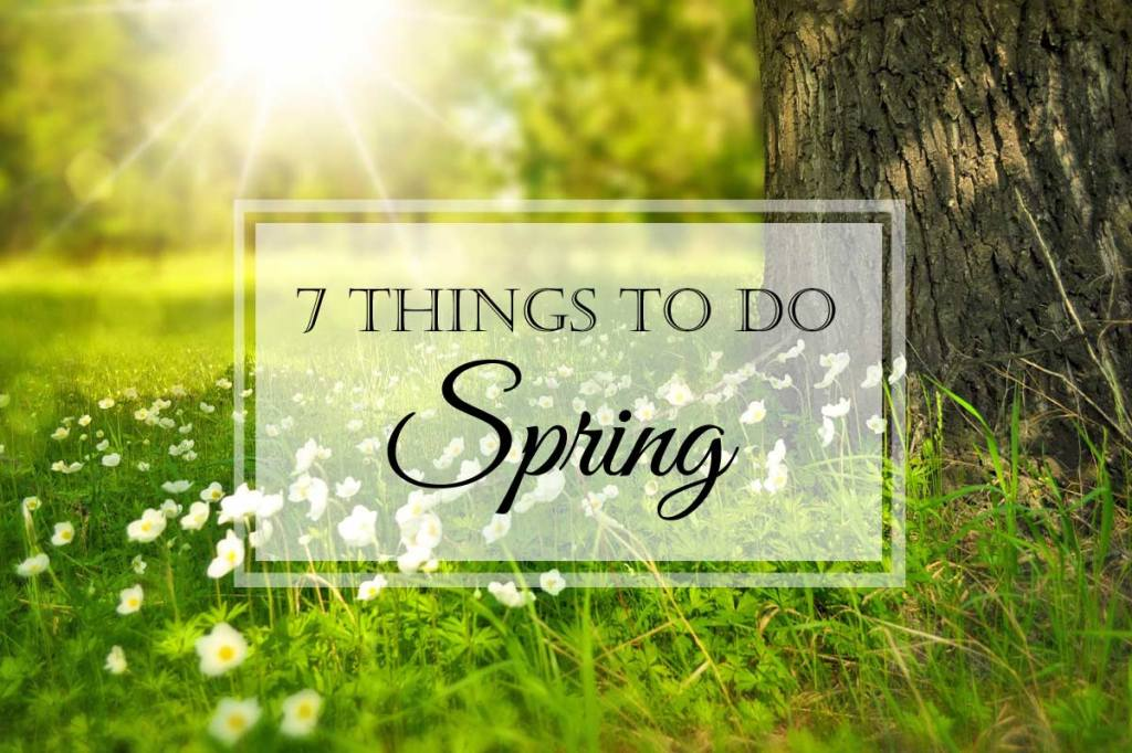 7 Things to Do This Spring