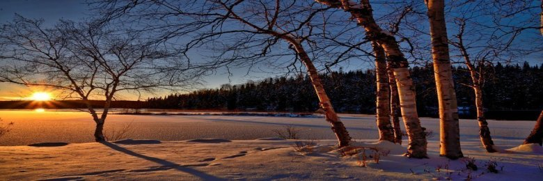 """""""Stopping by Woods on a Snowy Evening"""" by Robert Frost"""