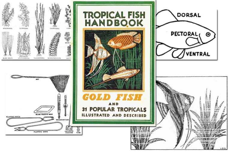 Tropical Fish Handbook ~ Free eBook