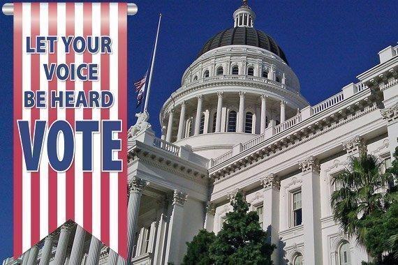 Free Civic Studies Lesson 14: The Citizen