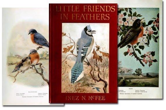 Little Friends in Feathers {Free eBook}