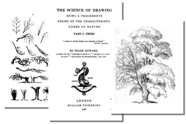 The Science of Drawing: Trees {Free eBook}