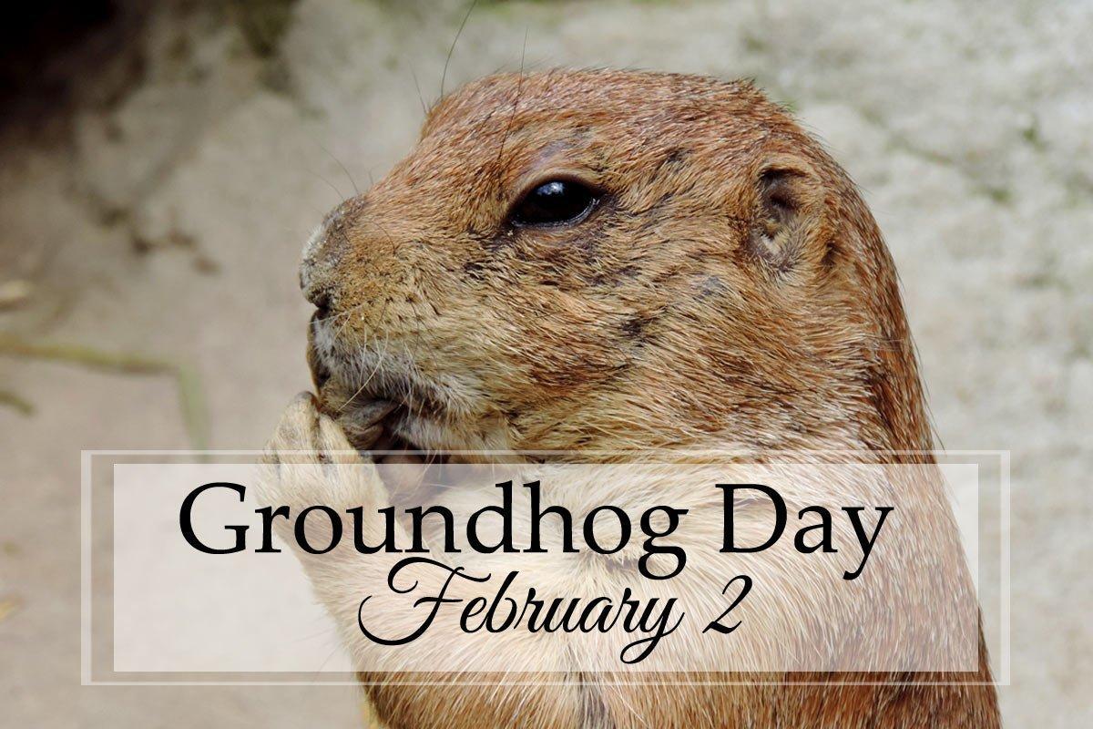 Groundhog Day: A Unit Study