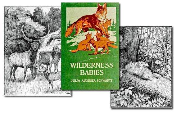 Wilderness Babies {Free eBook}