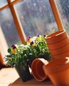 Gardening: A Unit Study