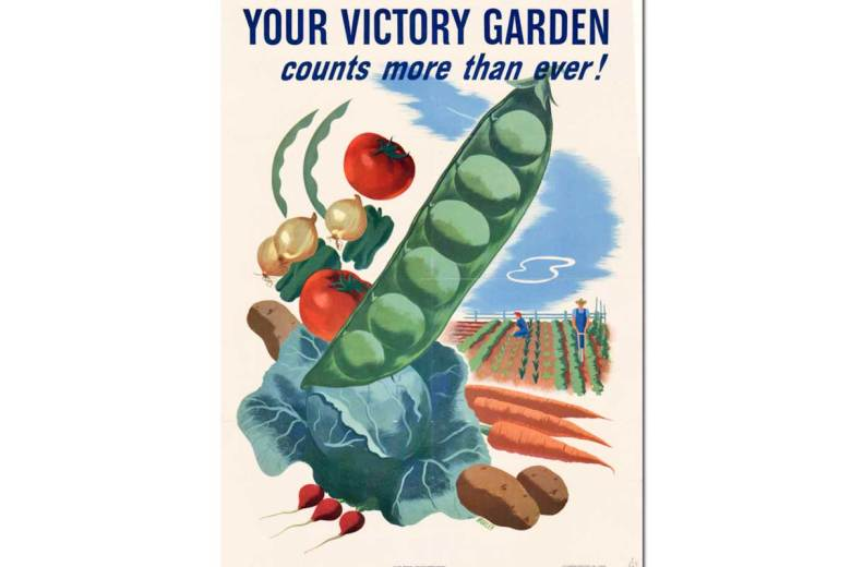 Victory Garden Project ~ Free Unit Study