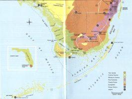 The Florida Everglades: A Unit Study