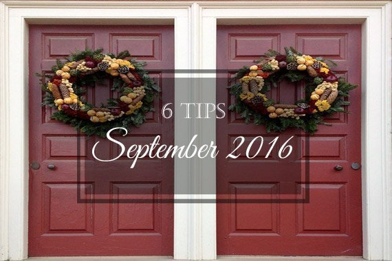 6 Tips for September 2016