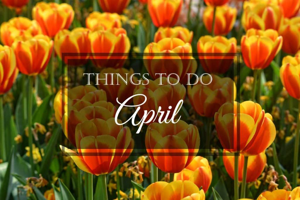 Things to Do: April