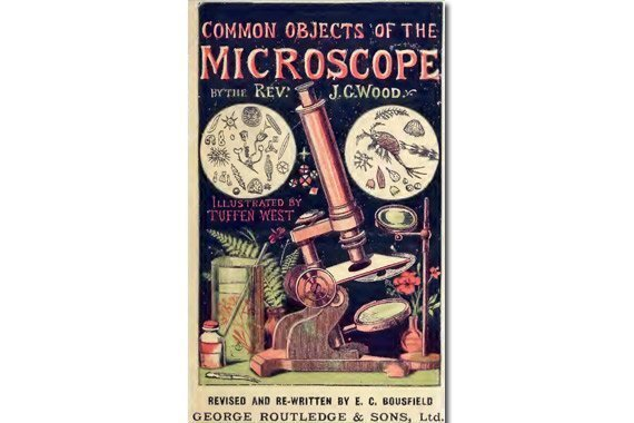 Common Objects of the Microscope {Free eBook}