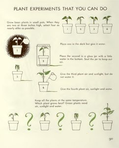 The First Book of Plants {Free eBook}