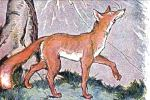 The Fox and the Grapes: A Mini Unit Study