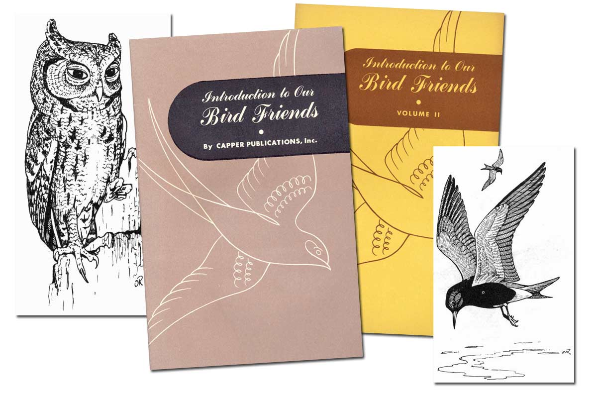 Introduction to Our Bird Friends ~ Free eBook