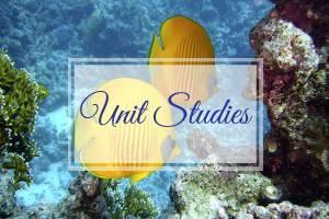 Unit Studies