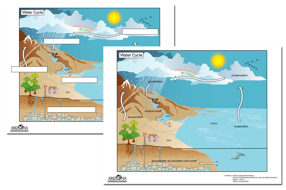 Water Cycle Printables ~ Free