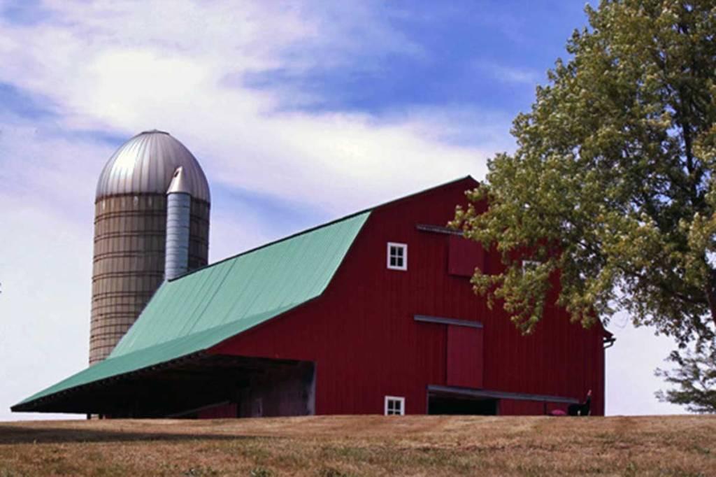 Activity: Explore the Farm