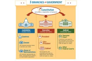 3 Branches of Government Poster {Free}