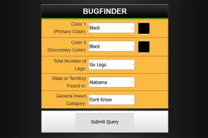 Insect Identification {Free Interactive}