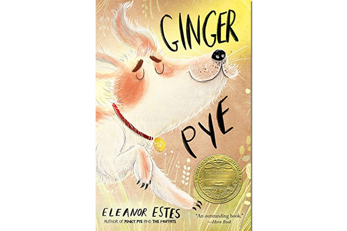 Ginger Pye: Review Go-Along Activities