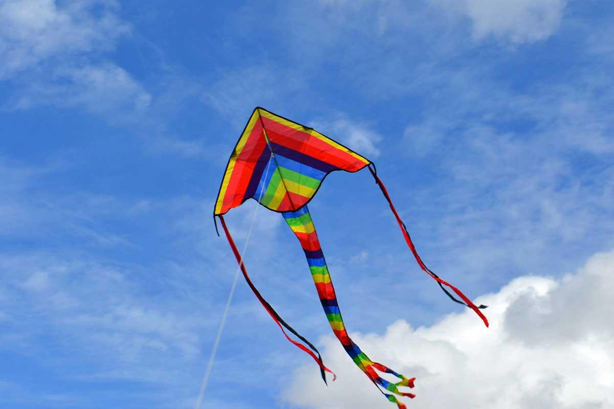 Fun and Wonderful Kites {Free Unit Study}